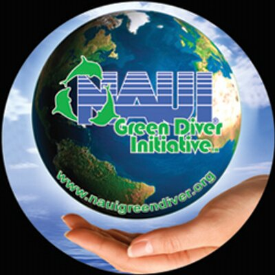New green diver decal 400x400